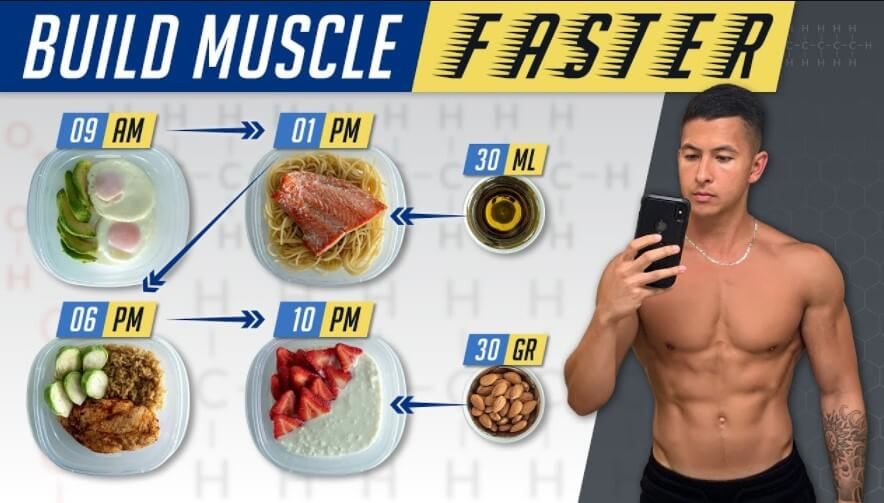 Muscle Development and Muscle Mass Gain