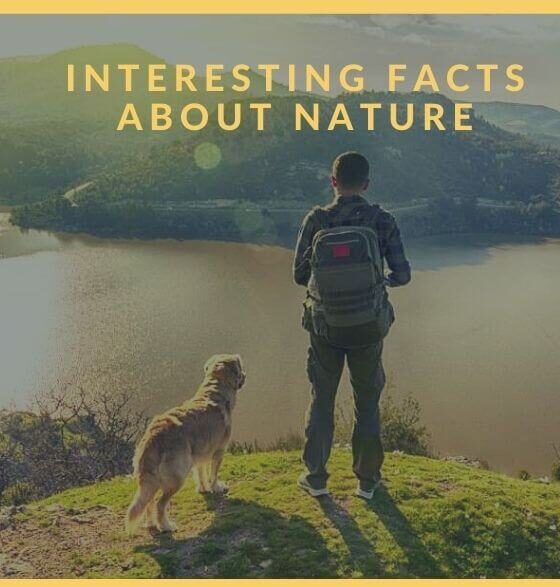 interesting-facts-about-nature