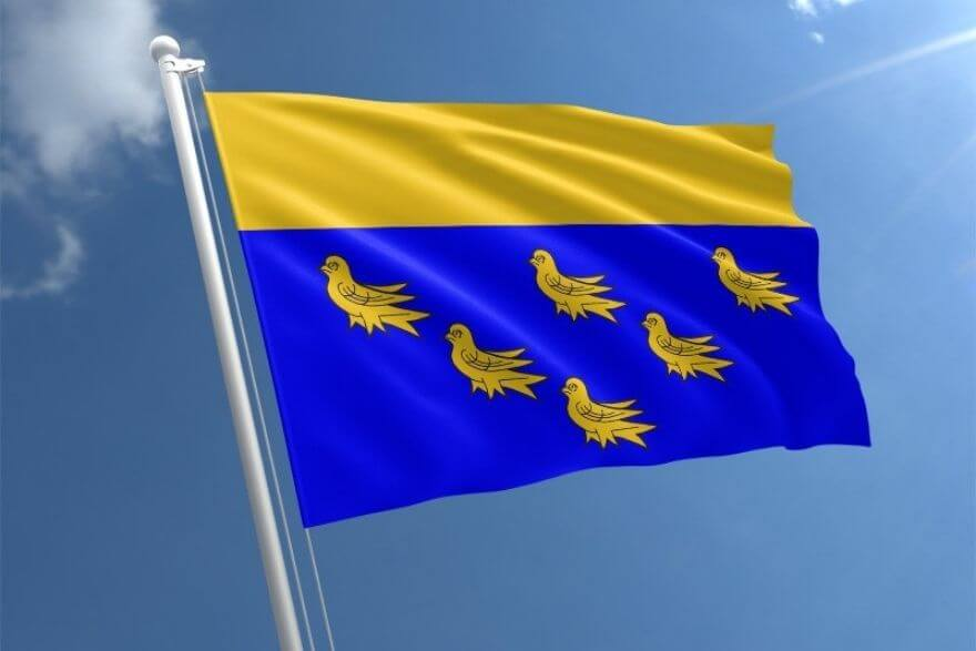 blue-and-yellow-flag-with-birds